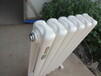 金捷瑞钢制暖气片家用水暖暖气片钢二柱钢制散热器壁挂式采暖立式