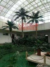 石家庄仿真树保定仿真椰子树唐山仿真棕榈树质优价廉品质保证生产厂家