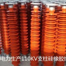 湖南FZSW-12/4复合绝缘子瓷瓶生产厂家直销线路用绝缘子图片