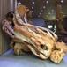 崖柏根雕木雕作品白菜百财树根整体雕刻办公场所摆件工艺品动物人物雕像山水田园