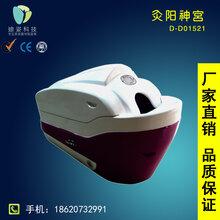 迪姿D-D01521灸阳神宫养生排毒仪器全面养生理疗保养仪器美容院专用保健养生仪器