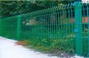 花坛绿化钢丝围网市政防护网绿化带隔离网绿篱铁丝栅栏