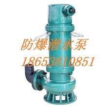 防爆潛水泵規格