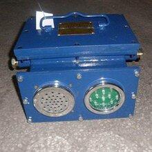 礦用語音聲光信號裝置