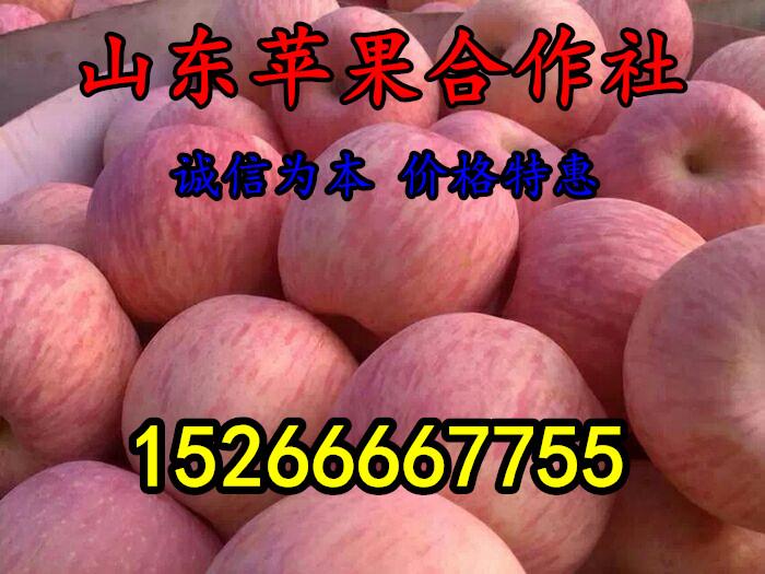 沂水县修杰水果购销处