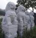 厂家直销石雕狮子生产订做石雕狮子批发