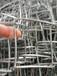 矿山支护铁丝菱形网,镀锌菱形网生产厂家,神木铁丝菱形网直销