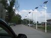 齊齊哈爾路燈廠家-齊齊哈爾LED路燈-齊齊哈爾太陽能路燈