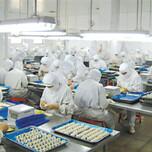 深圳松岗电子厂装饰公司图片