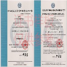 廣州荔灣汽車用品廠管理體系認證辦理