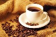 云南咖啡交易中心,云南咖啡交易中心电话,昆明咖啡公社供