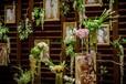 2017西安最新婚礼套餐。长安路鹏远婚庆公司