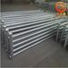 鋼制光排管散熱器B型熱水式暖氣片適用范圍廣