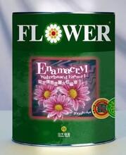 菊花牌水性磁漆2000类图片