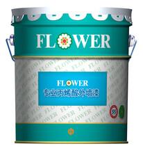 菊花牌抗碱型外墙保护漆FP401图片