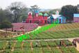 广州周边游玩推荐去松湖生态园一日游