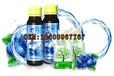 蓝莓饮品OEM代工厂直销产品合作伙伴