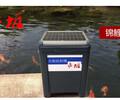 鱼池太阳能喂食器太阳能自动喂粮机