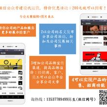 深圳湛江阳江微信公众号建设代运营全国接单甲侯商业