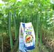 内蒙古葡萄专用肥销售供应