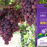 广东微生物菌肥价格图片
