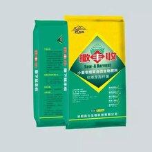 撒丰收小麦专用药肥小麦底肥小麦肥料防虫控蚜预防病害改良土壤省时省力图片