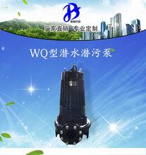 污水泵环保污水处理泵污水池潜水泵