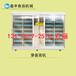 安徽滁州芽苗菜机厂家小型芽苗菜机多少钱全自动花生芽机