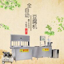辽阳专业生产大豆腐机大豆腐机操作简单厂家售后有保障图片
