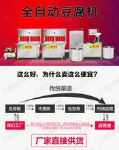 河源不锈钢豆腐机器豆腐机一人就可操作购机签订合同图片