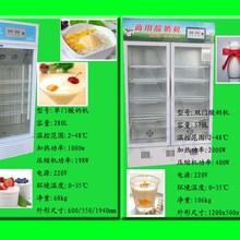小型酸奶加工设备酸奶机酸奶加工设备