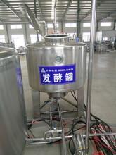 东北发酵罐灭菌原理葡萄酒杀菌罐罐价格大型酸奶生产线