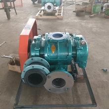 锅炉废气排放设备神风罗茨风机SFSR200型辉航设备