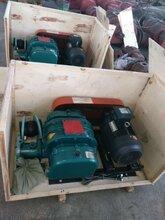 锅炉废气排放设备神风罗茨鼓风机SFSR100型
