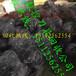 大陆回收废钨钢数控刀具铣刀丝锥钻头