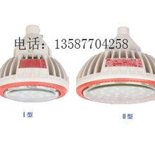 新黎明BZD118防爆免维护低碳免LED照明灯