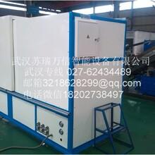 武汉苏瑞SRCJ-1T电动缸挤压针刺机图片