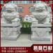 门口石雕狮子石狮子石雕设计腾磊