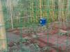 果园荷兰网又名波浪网、波浪护栏网、PVC荷兰网、PVC涂塑电焊网。