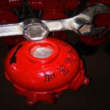 防盗水消防栓头图片