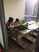 武汉天地小学三到六年级英语辅导,兴趣开花,花满枝头。