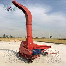 大型鍘草機鍘草機廠家干濕秸稈鍘草機高效節能鍘草機在線定制熱賣圖片