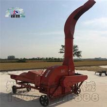 山东秸秆粉碎机秸秆粉碎机秸秆铡草机机械设备玉米杆大型铡草机图片