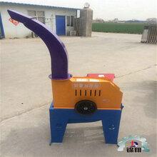 四川瀘州鍘草設備鍘草碎草機新式高噴鍘草機鍘草機圖片