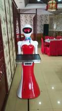 送餐服务机器人厂家可定制