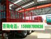 甘南出售大型二手豪沃375重体双驱车159-6979-0636厂家价格