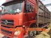 济宁出售大型二手豪沃375重体双驱车供应商