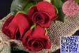 广州四季风出品玫瑰香精耐高温烘焙香精留香持久