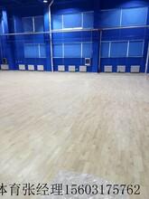 2017体育运动木地板厂家特惠图片