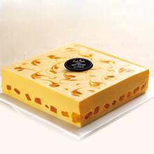 深圳同城订购芒果芝士慕斯生日蛋糕,考拉菲比专业5小时新鲜配送图片